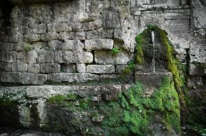 Italia Verde 3